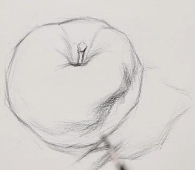 素描入门教程:怎么画苹果详细步骤(4)
