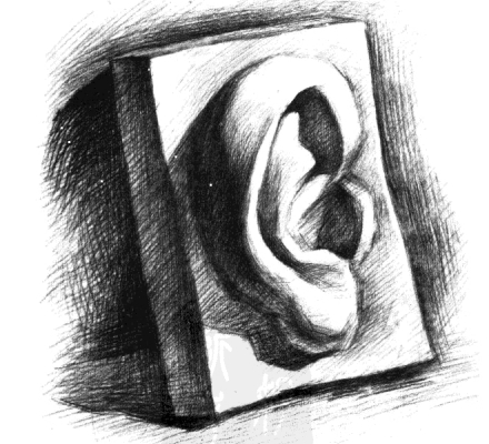 素描石膏耳朵的画法步骤3