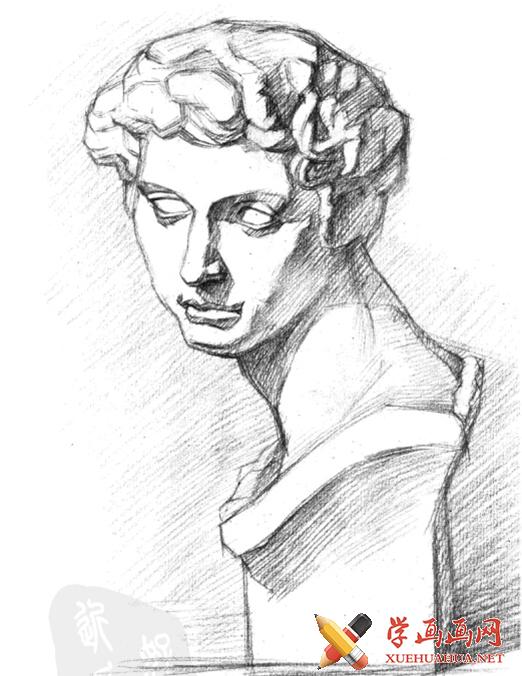 石膏像《小卫》画法步骤(3)