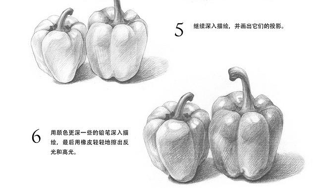素描入门_青椒的画法教程(4)