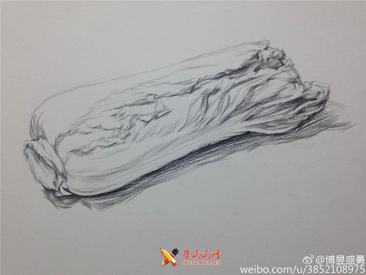 素描入门:单个物体白菜的素描画法教程(3)