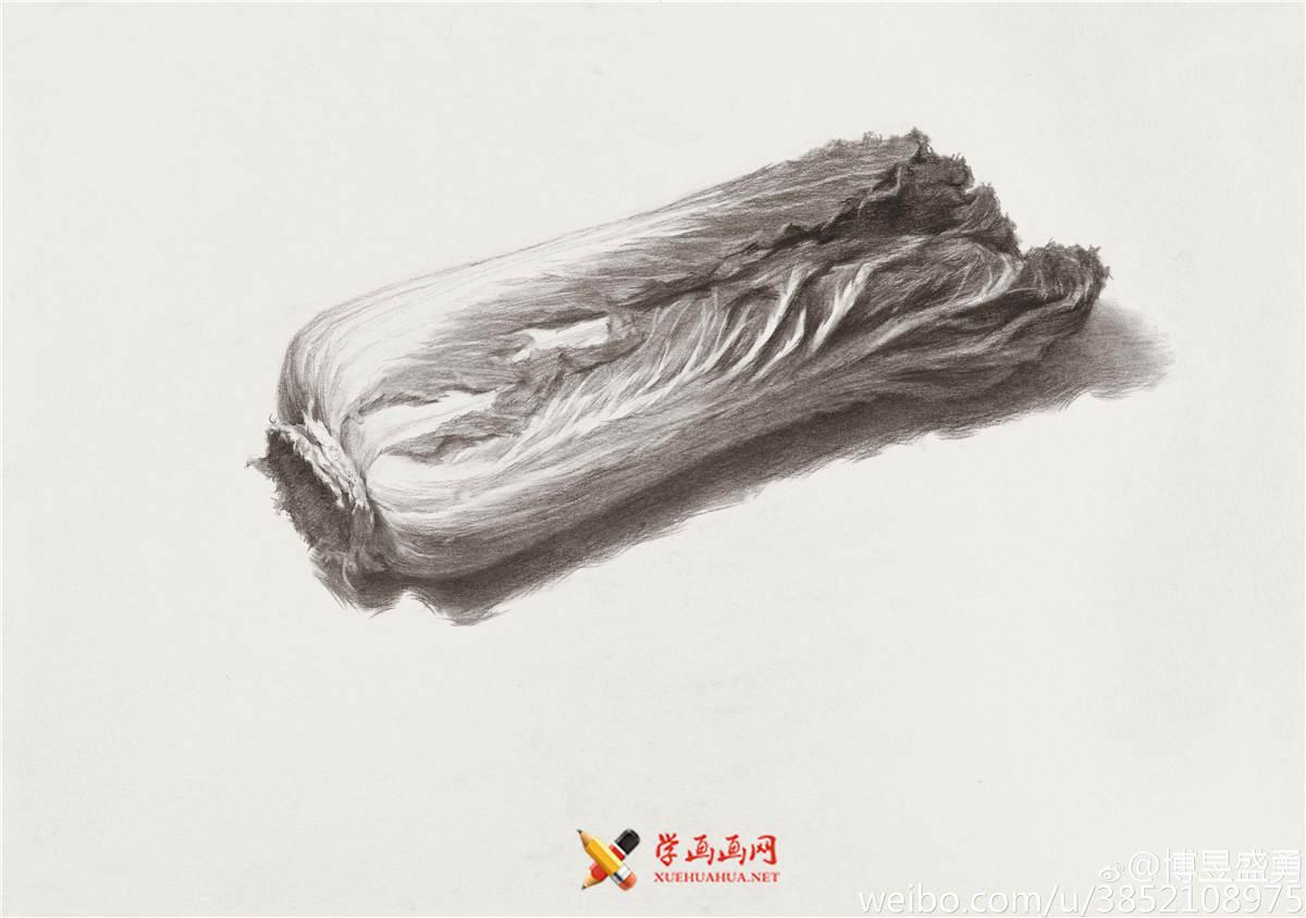 素描入门:单个物体白菜的素描画法教程(6)