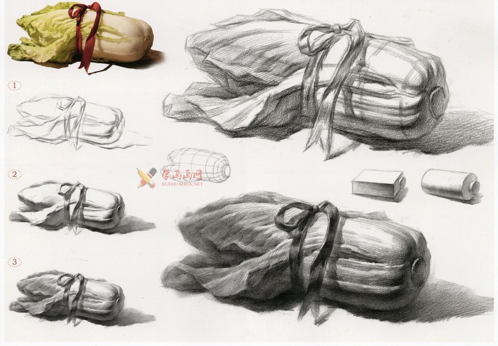 白菜怎么画?素描大白菜的画法图解及临摹范画图片素材(4)