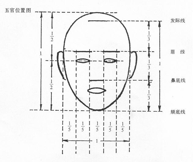 一张图讲解三停五眼(1)