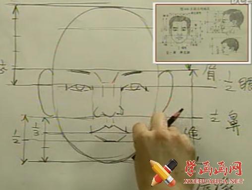 素描头像教程《头部的比例》(1)