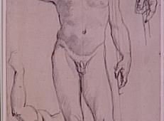 安格尔素描男子人体.jpg