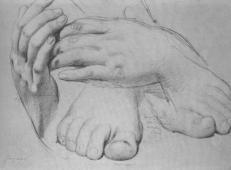 黄金时代中手和脚的素描.jpg