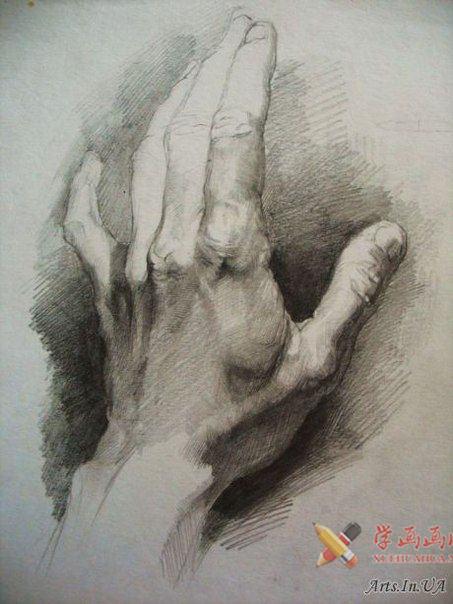 素描手图片欣赏(2)