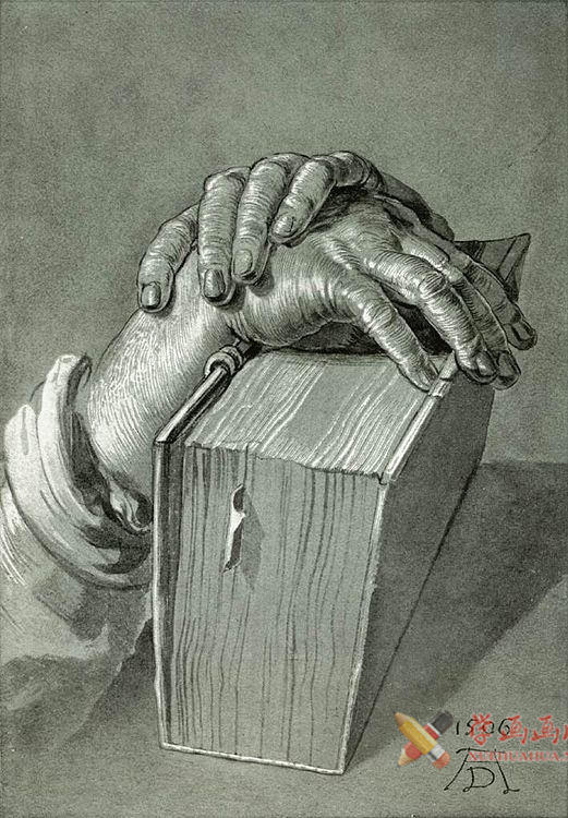 素描手图片欣赏(5)