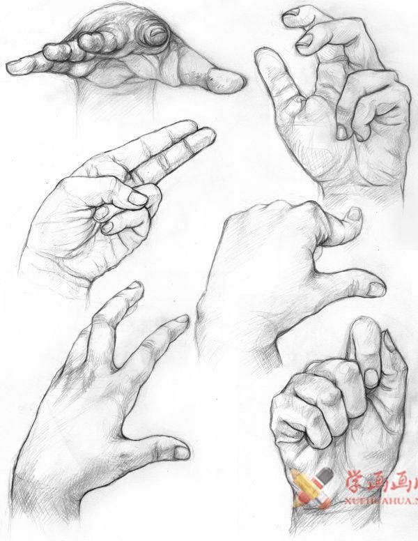 素描手图片欣赏(6)