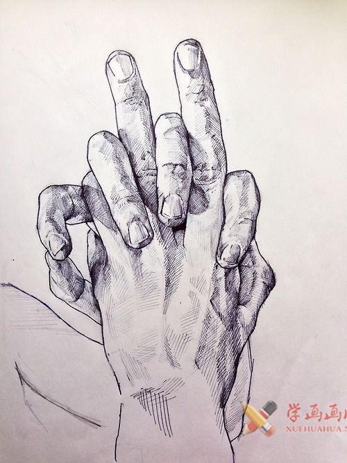 素描手图片欣赏(8)