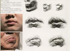 素描嘴的画法步骤分解及各角度素描嘴的画法范画图片大全