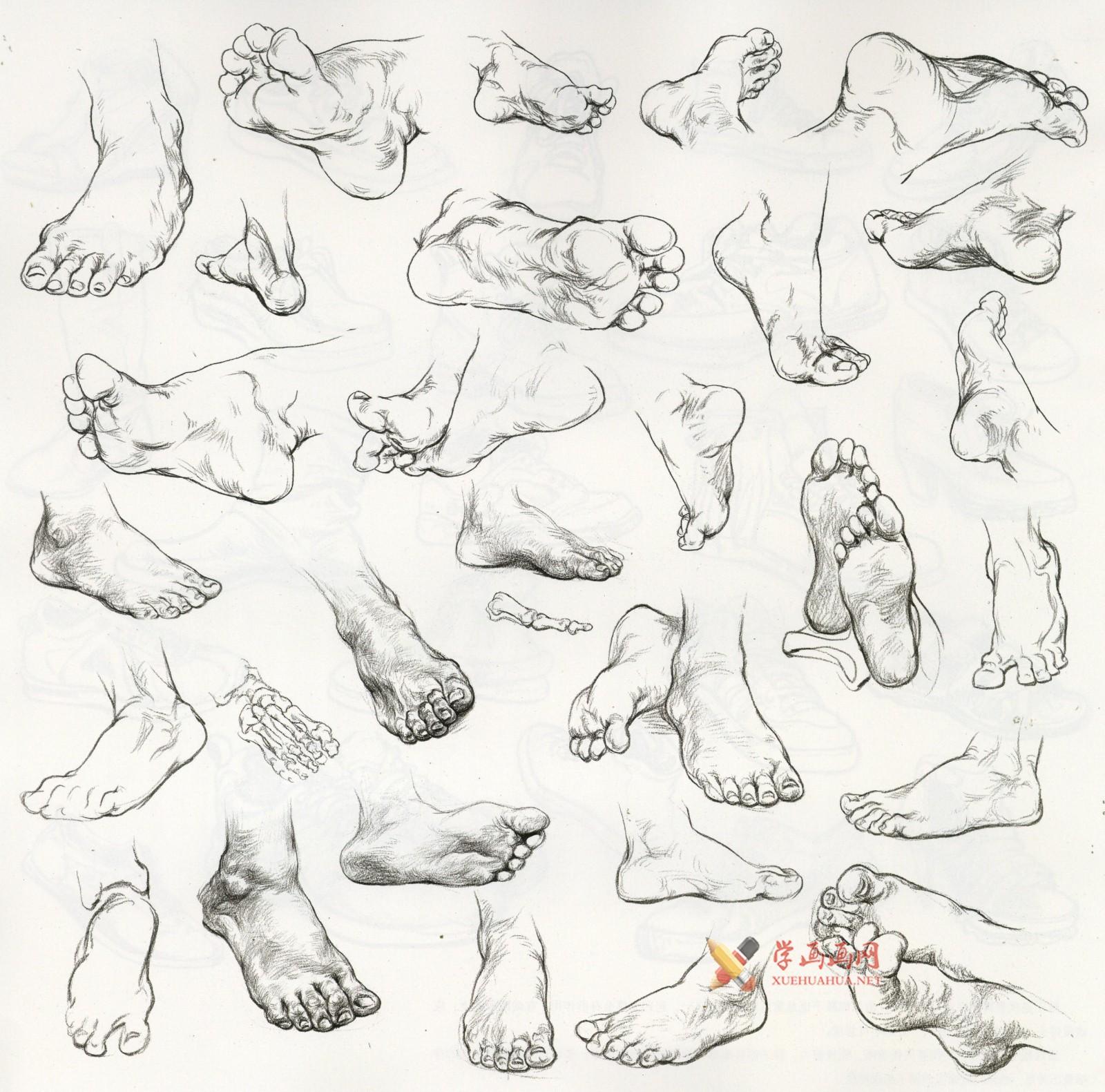 怎么画速写脚?速写脚的画法讲解及各角度脚的速写画法临摹范画(3)