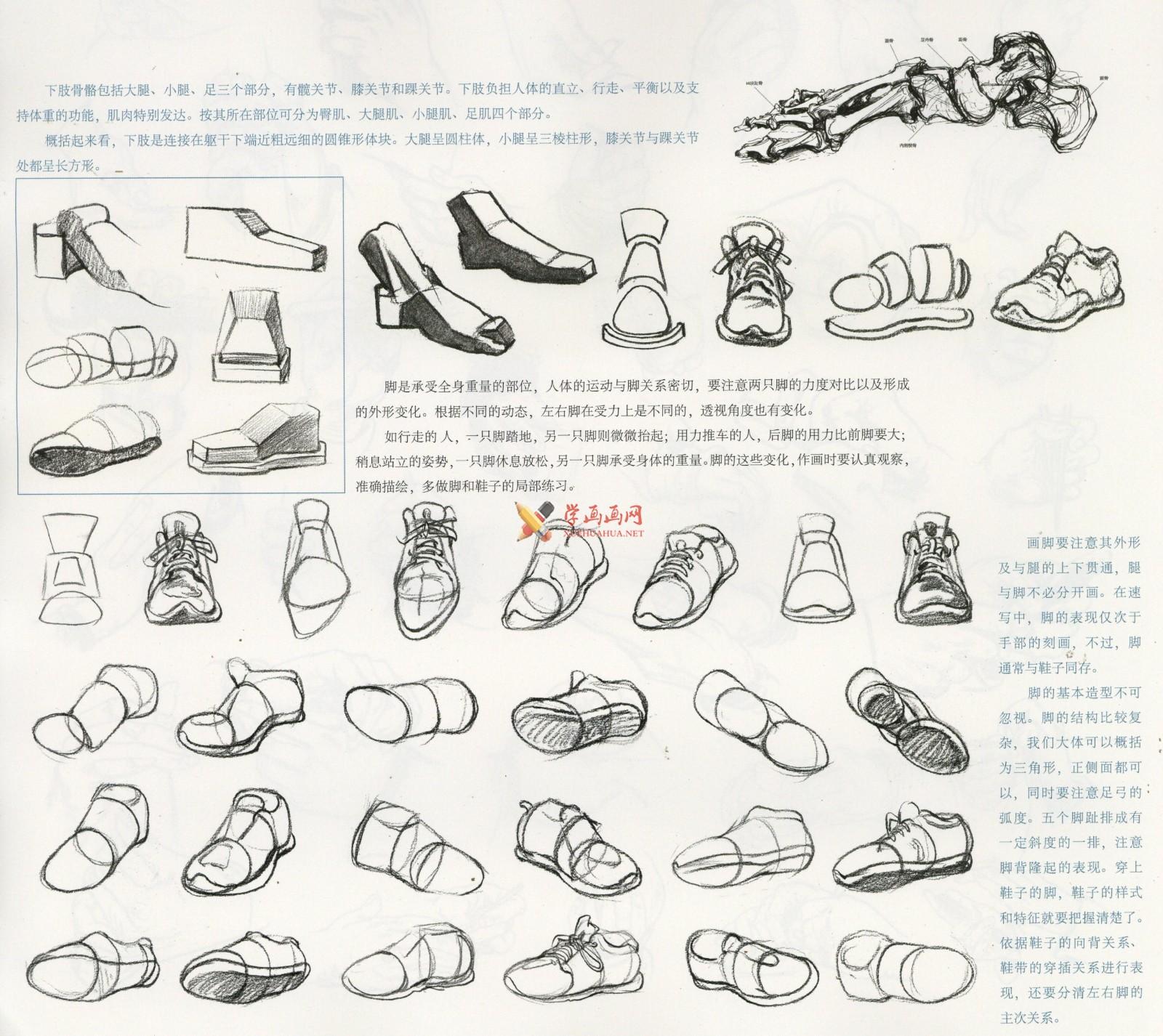 人物速写:鞋子的画法及各角度鞋子的速写画法临摹图片范画(1)