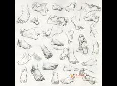 怎么画速写脚?速写脚的画法讲解及各角度脚的速写画法临摹范画