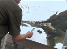 白羽平老师油画风景视频教程