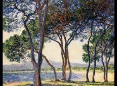 昂蒂布海边的树 莫奈.jpg