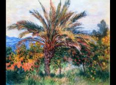 博尔迪盖拉棕榈树 莫奈.jpg