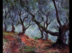 博尔迪盖拉橄榄树果园 莫奈.jpg