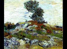 岩石上的橡树 荷兰 梵高 油画.jpg