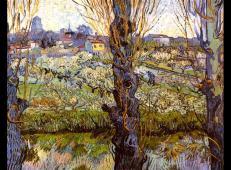 杨树旁盛开的果园 荷兰 梵高 油画.jpg