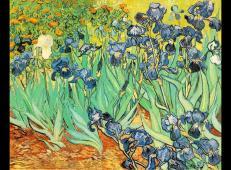 鸢尾花 荷兰 梵高 油画 美国,加州,保罗盖兹美术馆内藏 1889.jpg