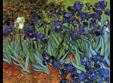 鸢尾花1 荷兰 梵高 油画 美国,加州,保罗盖兹美术馆内藏 1889.jpg
