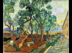 在圣雷米的圣保罗医院花园 荷兰 梵高 油画.jpg