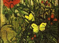 罂粟花和蝴蝶 荷兰 梵高 油画.jpg