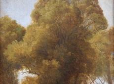 树林 法国 安格尔.jpg