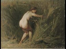 芦苇丛中的少女.jpg
